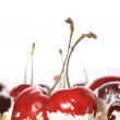 Cream, cherries on a white background - Stock Photo