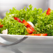 Salad. — Stock Photo