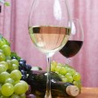 Stock Photo: Wine composition
