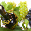 Wine bottle and young grape vine — Stock Photo #10528516