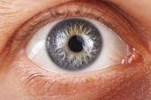 Göz küresi — Stok fotoğraf