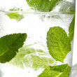 Mint ice vodka — Stock Photo #10623180