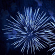 Firework in honor of Independence Day — Stock Photo #10623233