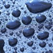 Royalty-Free Stock Photo: Drops on fresh asphalt, oil