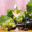 Wine composition — Stock Photo #10629829