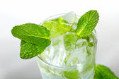 Mint ice vodka — Stock Photo