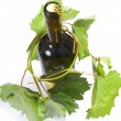 Wine bottle and young grape vine — Stock Photo #10644064