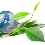 The globe concept eco — Stock Photo #10644479