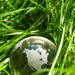 Globe in a grass, ecology - Foto Stock