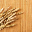 Grain ears — Stock Photo #10672960