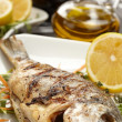 Fish with lemon — Stockfoto