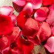 Petals of a rose — Stock Photo #9040976