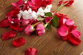Rose, drop water — Stock Photo