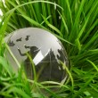 Globe on grass — Stock Photo