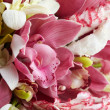 Orchid bouquet — Stock Photo