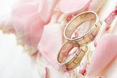Gouden ringen en rozenblaadjes — Stockfoto