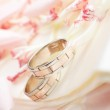 Golden rings and rose petals — Stock Photo #9226126