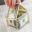 Stock Photo: Dollars house