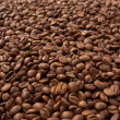 Coffee grain - Stock Photo