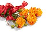 πορτοκαλί τριαντάφυλλα — Φωτογραφία Αρχείου
