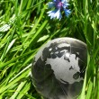 Stock Photo: Globe in grass, ecology