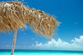 On a tropical island, travel background, cuba — Stock Photo