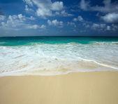 The beach — ストック写真