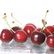 Cherries on white background — Stock Photo #9833124