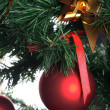 Red balls hanging from christmas tree — Stock Photo #9841710