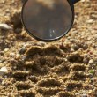 Magnifier, trekkers boot print - Stock Photo