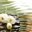Spa still-life, aroma flower - Foto de Stock