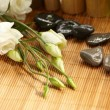 Stock Photo: Still-life, flower aroma