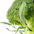 Broccoli — Stock Photo #9962423