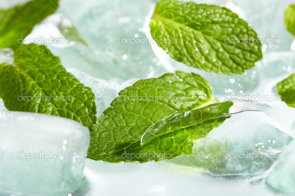Download - Leaves of mint in ice — Stock Image #9962241