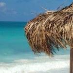 On a tropical island, travel background, cuba — Stock Photo