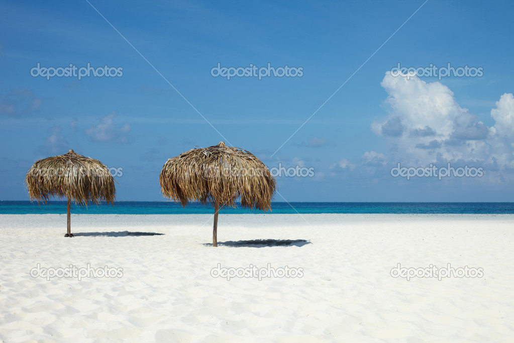 On a tropical island, travel background, cuba  Stock Photo #9975839