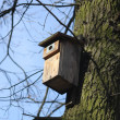 Box for birds — Stock Photo #10669090