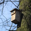 Box for birds — Stock Photo