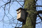 Box for birds — Stock Photo