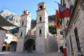 Cathedral of St Tryphon in Kotor, Montenegro — Stock Photo
