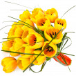 Yellow tulips closeup — Stockfoto