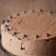 Triple chocolate cake - Stock fotografie