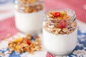 Lahodný a zdravý jogurt s müsli — Stock fotografie