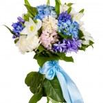 Flowers isolated on white background — Stock Photo #9663915
