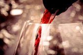 Pouring red wine — Stockfoto
