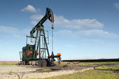 Oil industry pumpjack — Stock Photo