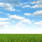 自然背景-草甸和蓝蓝的天空 — 图库照片