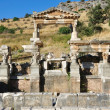 Ephesus, Turkey — Stock Photo #8177176