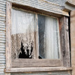 Old Farmhouse Window — Stock Photo #8367351