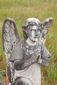 墓地の天使 — ストック写真
